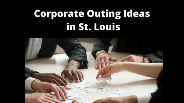 Featured image for Corporate Outing Ideas St. Louis